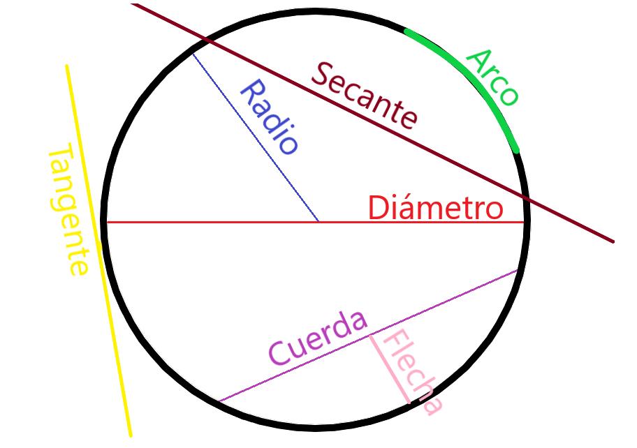 Lineas De Las Circunferencias Explicaciones De Matemáticas Guías Procedimientos Y Operaciones Paso A Paso